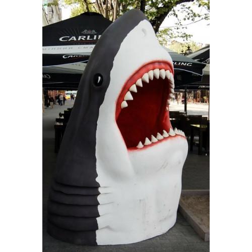 Голова акулы фото зона