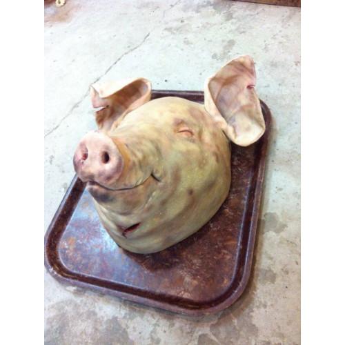 Муляж голова свиньи.
